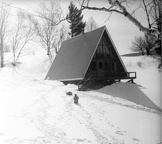 Inspire Me Monday: A-Frames in Snow