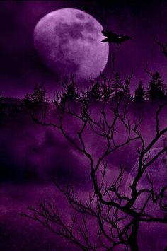 Purple moon