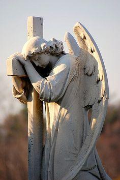 mt. hope cemetery - toronto