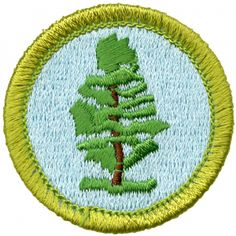 Find official Boy Scouts of America® merit badges and insignia for every program's rank achievements. Scout Store, Boy Scouts Merit Badges, Boy Scout Patches, Scouts Of America, Boys, Google Search, Baby Boys, Scout Badges, Senior Boys