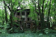 Abandoned Island in the Middle of NYC  Located in between Queens and the Bronx, in 1885 the island was used to build a hospital complex to quarantine and treat people suffering from smallpox and typhoid fever. In the 1950's it was turned into a rehab center. The entire island has been abandoned since 1963.