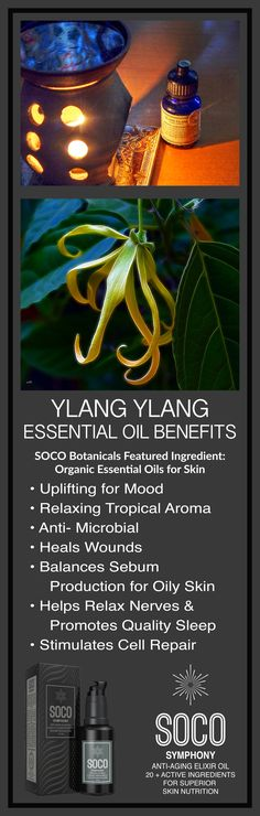 Ylang Ylang Essential Oil Benefits: Calms the nerves & uplifts mood, Balances Sebum Production, Antimicrobial & Antiseptic, Promotes Wound Healing, Increases Cell Renewal Pomegranate Seed Oil, Raspberry Seed Oil, Neroli Essential Oil, Essential Oils For Skin, Wound Healing, Oil Benefits, Face Oil, Anti Aging, Herbalism