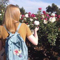 LA rose garden