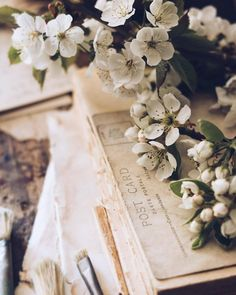 'Spring a lovely reminder of how beautiful change can truly be' 🌿 Happy Friday.hands up who'll be enjoying a Prosecco or two in the… Peach Aesthetic, Book Aesthetic, Romantic Pictures, Rustic Pictures, Vintage Pictures, Photography Challenge, Bouquet, Vintage Lettering, What Is Tumblr
