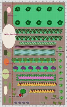 Garden Plan - 2013: Walled garden allotment 1, we have just taken over an allotment and this is the first plan, a very exciting time for us. This plan was designed using old seeds and divided clumps of perennials, anything we had to hand. It has been planted as a fall garden using the Garden Plan Pro app and then the background was added later using the online Garden Planner from growveg.com
