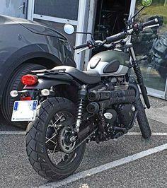 Triumph Street Scrambler, Zard, Vespa, Biking, Trail, Motorcycles, Vehicles, Scrambler Motorcycle, Wasp