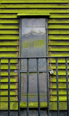 Color inspiration :) chartreuse and metal doorway Go Green, Green And Grey, Green Colors, Green Eyes, Olive Green, Old Doors, Windows And Doors, Palette Verte, Portal