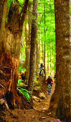 The Sandy Ridge Trail System offers over 15 miles of mountain bike trails, ranging from easy for beginners to more challenging trails for the experienced rider looking for adventure.