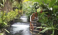 The geothermal activity around Arenal Hot Springs in Costa Rica heats the waters and infuses them with healing minerals. (From: Photos: 12 Gorgeous Hot Springs)