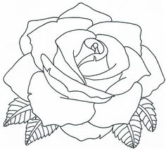 . Drawings To Trace, Outline Drawings, Easy Drawings, Rose Outline Drawing, Pencil Drawings Of Flowers, Flower Sketches, Colorful Drawings, Floral Tattoo Design, Tattoo Flash Art