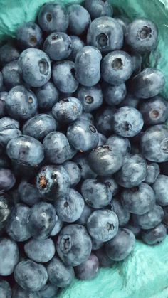 Got some blueberries for pancakes tomorrow  💙