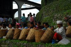 Women wait outside the tea factory at the Glenburn Tea Estate in Darjeeling to have their baskets of tea weighed.