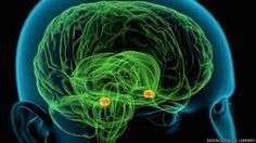 Nöroteknoloji: Beyin okuma çağı başlıyor - BBC Türkçe