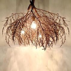 Classic Native Tumbleweed Chandelier from Scoutmob