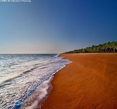 Trivandrum, Kerala - India - Gorgeous!