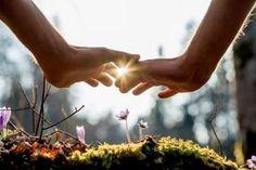 """rose62530: """"  """" Ne laisse entrer dans le jardin de ta vie que ceux qui ont des fleurs à planter ."""" Mazouz Hacène """""""