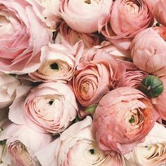 We're beyond obsessed with Peonies. Beautiful chic and timeless - they make the perfect addition to any bouquet especially in soft pink and blush hues. Wedding Day Weddings Your Big Day Flowers Uk, Beautiful Flowers, Wedding Flowers, Gift Flowers, Wedding Blush, Flower Boxes, My Flower, Peonies Season, Bloom