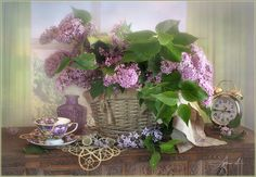 The flowering time of lilac by Luiza  Gelts -            Луиза  Гельтс - Photo 157803791 - 500px