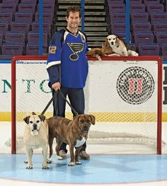 Stereotypes are hard to break. Mention hockey players and some picture battle-scarred faces and toothless grins. Mention shelter dogs and so...