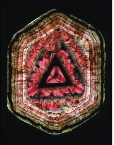 Slice of Tourmaline (Liddicoatite)
