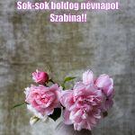 boldog névnapot szabina 62 best Névnap images on Pinterest | Name day, Saint name day and  boldog névnapot szabina