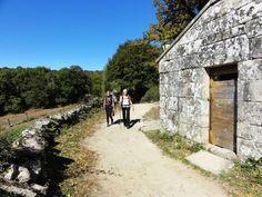 Meditation og let vandring på Caminoen, Spanien | 24. - 31. juli 2015 - Trænger du til at koble af fra en travl hverdag? Giv dig selv muligheden for at finde indre ro og livsglæde, så du kan overskue en travl hverdag.  Tag med på en fællestur på Caminoen, hvor vi kombinerer pilgrimsvandring og meditation.