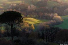 ombre_e_luci_giorgio_clementi_