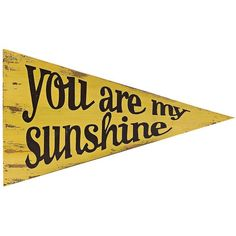 "Universal Lighting and Decor Sunshine 18"" Wide Pennant Wall Art (53 CAD) ❤ liked on Polyvore featuring home, home decor, wall art, fillers, words, text, backgrounds, quotes, yellow и phrase"