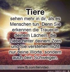 So true . the human being is generally deaf and blind and .- So wahr … der Mensch ist im allgemeinen taub und blind und meist nur an sich s So true … the human being is generally deaf and blind and usually only s … – the the - Totally Me, Old Quotes, Word Pictures, Pet Loss, True Facts, Picture Sharing, True Friends, So True, Make Me Happy