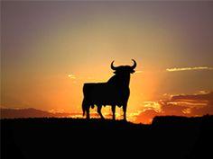 Das Stiersymbol in der Region Ronda #weißedörfer #ronda #spanien #stier #reisen