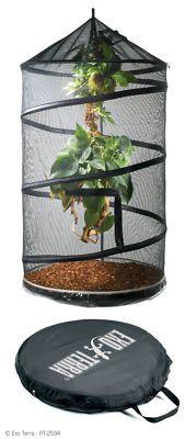 Aviario Exo Terra Explorarium hanging reptile terrarium ideal for snakes. Reptile Room, Reptile Cage, Reptile Enclosure, Reptile Pets, Chameleon Enclosure, Terrariums, Terrarium Reptile, Les Reptiles, Reptiles And Amphibians