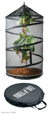 Hanging reptile enclosure - perfect for taking a bearded dragon along on a camping trip