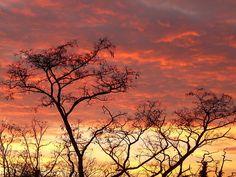 Gorgeous sunset!