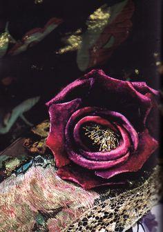 Velvet rose [Photo by Carter Berg from Ralph Lauren magazine.]