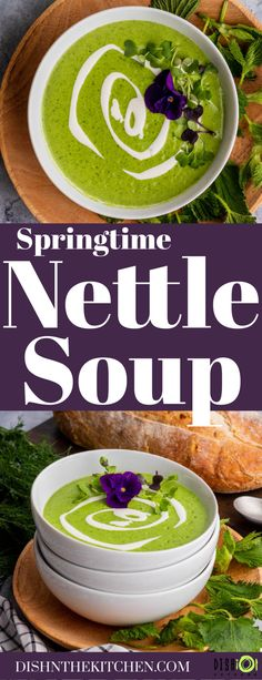 Stinging Nettle is a nutritious and delicious addition to traditional Potato Leek soup. Use foraged greens to turn this classic soup into a new Springtime tradition. #NettleSoup #StingingNettleSoup #foraging #soup Curry Recipes, Chili Recipes, Potato Recipes, Soup Recipes, Lunch Recipes, Dinner Recipes, Spring Recipes, Easter Recipes