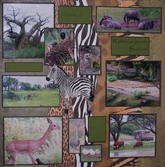 Animal Kingdom scrapbook page , photos - Bing Images