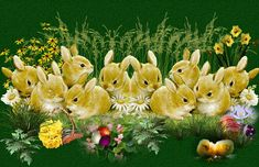 Risultati immagini per frohe ostern wünsche Easter Poems, Easter Quotes, Easter Greeting, Bunny Images, Images Gif, Happy Easter, Easter Bunny, Easter Eggs, Easter Present