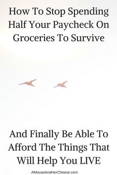 Food is expensive but it doesn't have to eat up your paycheck. Discover the simple strategies you can use to majorly slash your grocery bill! How To Make Money, How To Become, How To Get, How To Plan, Get Out Of Debt, Budgeting Money, Yolo, Personal Finance, Saving Money