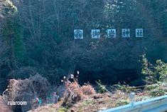 奇跡が起こる!日本最強のパワースポット・御岩神社との不思議な御縁   ツインソウルセラピスト妃月ルアの占い鑑定所