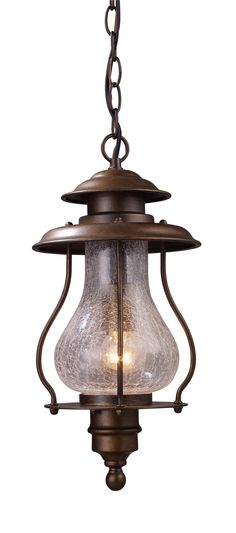 Wikshire 1 Light Outdoor Hanging Lantern
