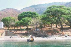 [En Colombia] LOS CIRUELOS, UNA EXTRAÑA TRADICIÓN.  El proyectado ecohotel Los Ciruelos, en el Tayrona, está más cerca de morir que de ser una realidad. A la decisión anunciada ayer por la Autoridad Nacional de Licencias Ambientales de suspenderle la licencia (2009) hasta que Parque Nacionales Naturales emita un concepto vinculante sobre su impacto en el ecosistema de la zona, se le suma una cadena de irregularidades en la adquisición del predio donde sería construido.
