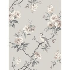 Chinoiserie Floral x Wallpaper Roll, a sophisticated floral pattern. Blooms barely tinted and birds are printed on a background. This wallpaper roll is a un-pasted, paper wallpaper. Grey Floral Wallpaper, Chinoiserie Wallpaper, Bird Wallpaper, Paper Wallpaper, Wallpaper Samples, Wallpaper Roll, Tree Branch Wallpaper, 1950s Wallpaper, Metallic Wallpaper