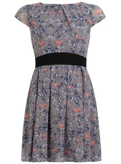 Petite grey bird chiffon dress only in a zero and a size 2. Dammit.