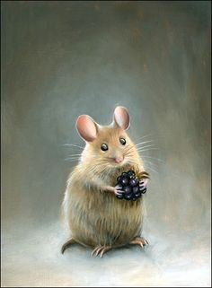 Jean bradbury картинки животные dyr, maling и billeder Art And Illustration, Illustration Mignonne, Animals And Pets, Cute Animals, Hamtaro, Pet Mice, Cute Mouse, Whimsical Art, Illustrators