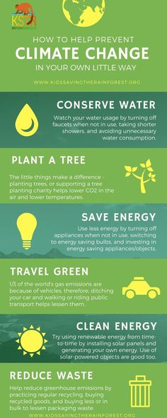 Thinking about going green? Green business practices are good for the environment and good for your bottom line! Learn 10 easy & affordable tips here. Water Conservation, Energy Technology, Global Warming, Solar Energy, Renewable Energy, Simple Way, Sustainability, Canning, 3d Printing