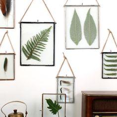Een trend voor je interieur in 2015 die je niet kunt missen is botanische prints. Aan de muur of in een lijstje op de kast, een mooie print van een groen blad past in elke woonstijl. Je kunt natuurlijk op zoek gaan naar een bedrukte poster, maar veel leuker is het om zelf een botanische wanddecoratie te maken. Wij laten je drie manieren zien! 1. Echte bladeren Plakbladeren met een stukje masking tape op wit papier en hang dit aan de muur. Het is mooi om zo een paar verschillende 'kaarten'…