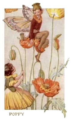 Margaret Tarrant - Flower Fairy Poppy