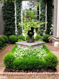 Beautiful gardens decorate many of the homes located in downtown, Charleston, South Carolina.