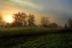 This looks so much like home. I wish I were there with my horses right now.