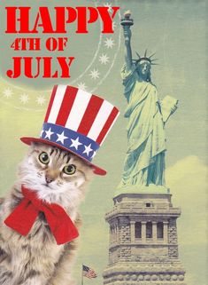 Even cats (who can be pretty indifferent), want to wish you a Happy July 4th!